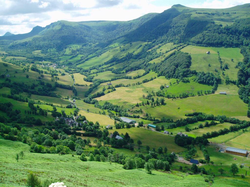 Bosquet Pature Sylsopastoralisme Credit Mission Haies Auvergne