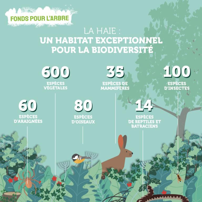 Pour la biodiversité