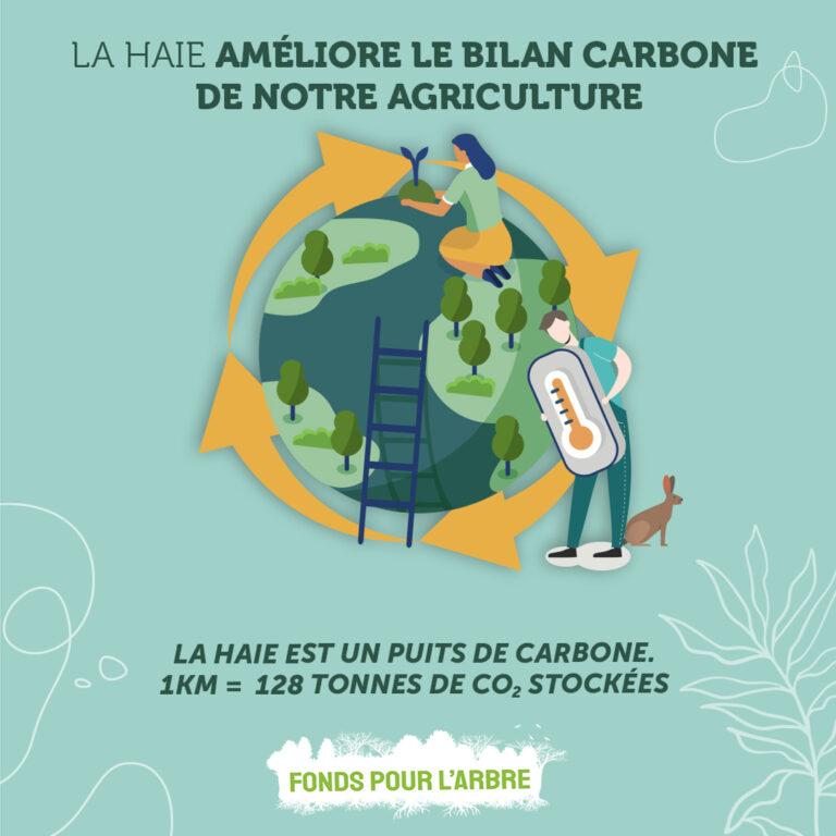 Pour le stockage carbone